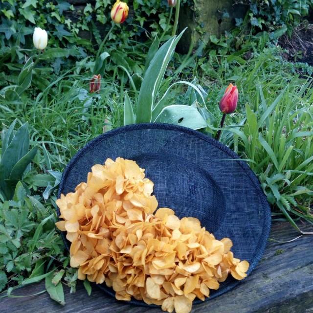 Semipamela pequeña y flores